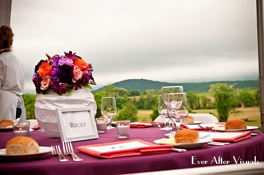 VERAMAR-VINEYARD-WEDDING-PHOTOGRAPHER-031