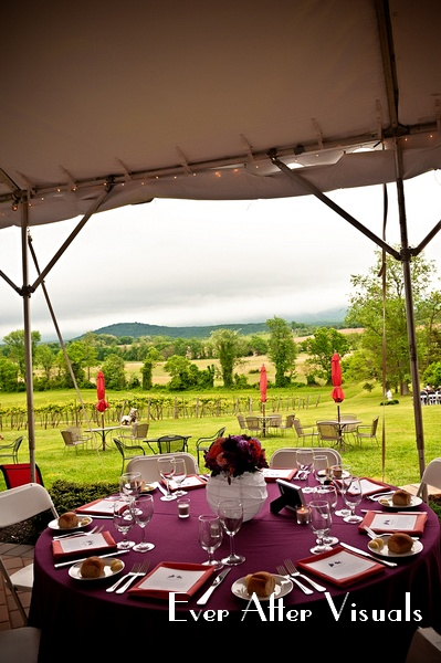 VERAMAR-VINEYARD-WEDDING-PHOTOGRAPHER-032
