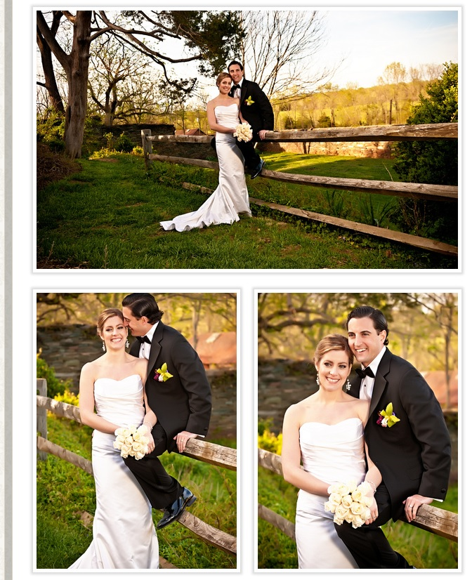 bride-and-groom-posing-at-fence-oatlands