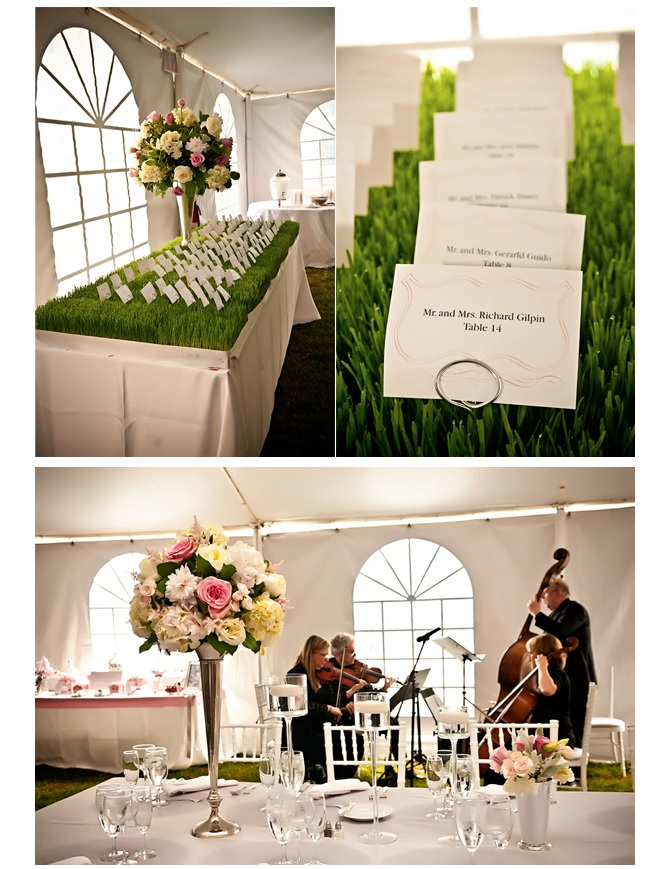 Wedding decor of flowers and escort cards for reception