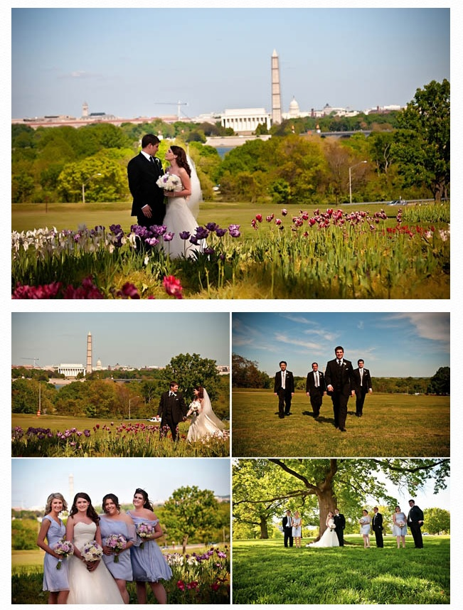 Bridal party with DC in background
